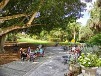 Marie Selby Botanical Gardens in Sarasota Florida.