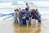Arte Xávega in Costa Caparica (Portugal), a traditional fishing practice.