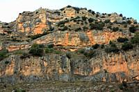 Rocky wall on the Monleón river. Peñagolosa natural park. Castellón.