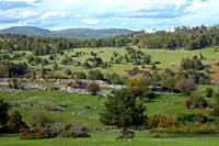 The Maíllo valley in the Sierra de Cuenca natural park.