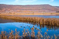 view of vico lake, province of viterbo, lazio, italy.