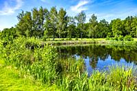 Golf course terrain in Meerhoven, Eindhoven, The Netherlands, Europe.