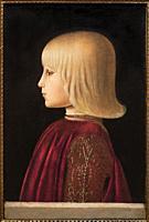 Piero della Francesca. Portrait of a Boy. (Guidobaldo Da Montefeltro?). ca. 1483. Tempera on panel. 41 x 27. 5 cm.