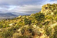 Path, granite and cistus in Sierra Cabrera. Madrid. Spain. Europe.
