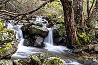 Hornillo stream in Sierra de Guadarrama. Madrid. Spain. Europe.