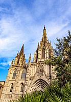 Cathedral of the Holy Cross and Saint Eulalia, Barcelona, Catalonia, Spain.