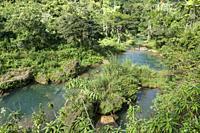 El Nicho Natural Park 2