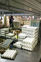 Dozens of fresh eggs for sale in the Mercado Principal, Campeche, Mexico.