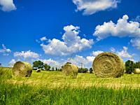 bales of hay near Lauzun, Lot-et-Garonne Department, Nouvelle-Aquitaine, France.