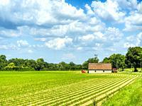 plowed field near Lauzun, Lot-et-Garonne Department, Nouvelle-Aquitaine, France.