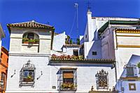 Colorful White Building Windows Plants Santa Cruz Garden District Seville Andalusia Spain Former Jewish quarter right next to Cathedral.