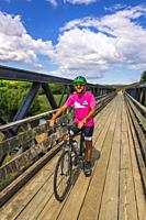 Cyclists on the Otago Central Rail Trail, Otago, South Island, New Zealand.