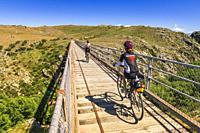 Cyclists crossing a tressel bridge on the Otago Central Rail Trail, Otago, South Island, New Zealand.