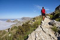 hiker on the way to Es Binis, Mallorca, Balearic Islands, Spain.