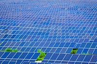Many Photovoltaic Solar Panels background at a Solar Farm.