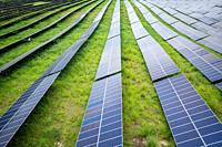 Rows of Photovoltaic Panels at a Solar farm in Nepal.