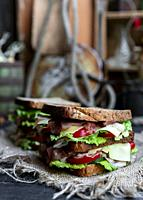Big sandwich with bread, prosciutto, lettuce, tomtatoes, cucumber and cheese in the kitchen.