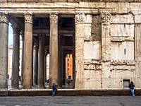 Detail of the granite Corinthian columns of the Pantheon - Rome, Italy.