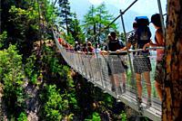 Bisse du Torrent Neuf, Bisse de Savièse, suspension bridge in Bernese Alps, Valais canton , Wallis canton, Switzerland, Europe