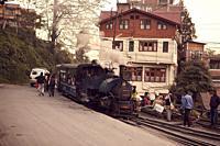Toy Train in Darjeeling. West Bengal, India