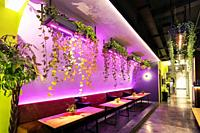contemporary asian interior design with hanging plants at restaurant in bangkok thailand.