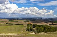 Typical Tuscan landscape in Val d'orcia, Italiy.