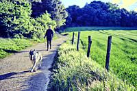 Young mature caucasian woman walking outdoor in a path in spring time with her wolf dog. Navarre, Spain, Europe.