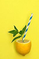 Lemonade from Lemon Fruit, Paper Straw and Mint Leaves.