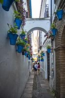 Cordoba Andalusia Spain the narrow street of the flowers with blue flowerpots.