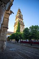 Cordoba Andalusia Spain Cordoba Great Mosque currently Catholic cathedral. UNESCO World Heritage Site.