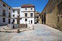 Cordoba Andalusia Spain Plaza del potro square.