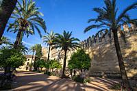 Cordoba Andalusia Spain El Alcazar.