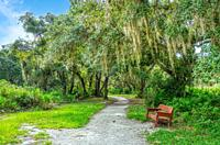 Walking trail in Lemon Bay Park and Environmental Centerin Englewood on the Gulf Coast of Florida USA.
