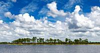 Webb Lake in Babcok Webb Wildlife Management Area in Punta Gorda Florida USA.
