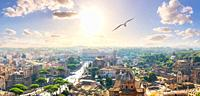 A seagull flies by the Capitoline Hill, Forum, Coliseum, Rome, Italy.
