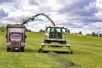 Clymer, New York - Alfalfa harvest on a farm in western New York.