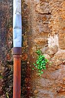 lead and iron drain on the wall, Banyoles, Catalonia, Spain