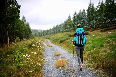 Young female pilgrim walking the Way of Saint James (Camino de Santiago), Galicia, Spain.