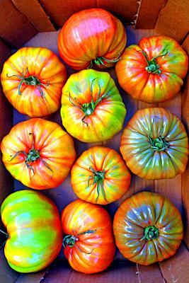 tomatoes, Fira de la Candelera 2020, Molins de Rei, Catalonia, Spain