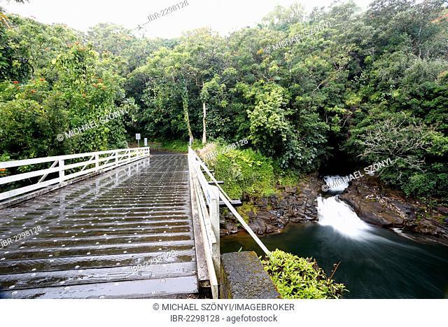 Bridge, waterfalls, Pepe'ekeo and Onomea Scenic Drive, Big Island, Hawaii, USA