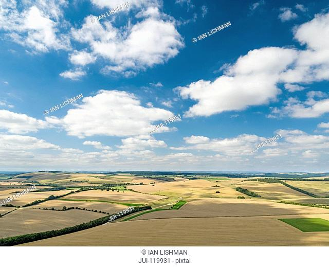 Aerial landscape view of summer wheat and barley field crops for harvest and blue sky with fluffy white clouds on farm