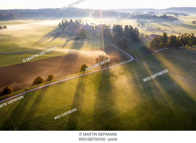 Germany, Bavaria, Ried near Dietramszell, ground fog at sunrise, drone view