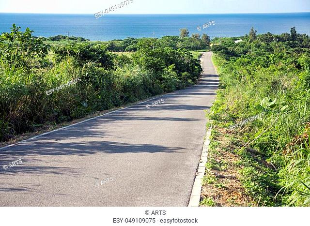 Down slope road through a bush toward sea in Ishigaki island