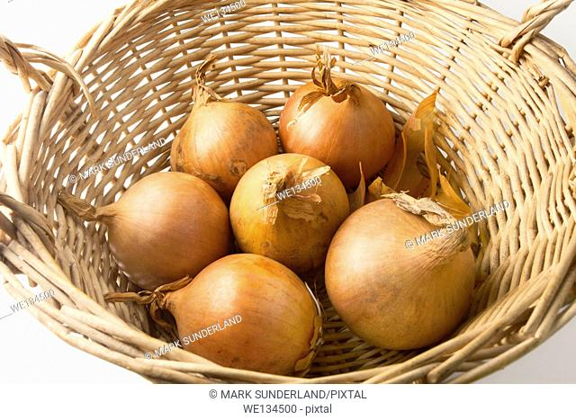 Six Brown Onions in a Basket