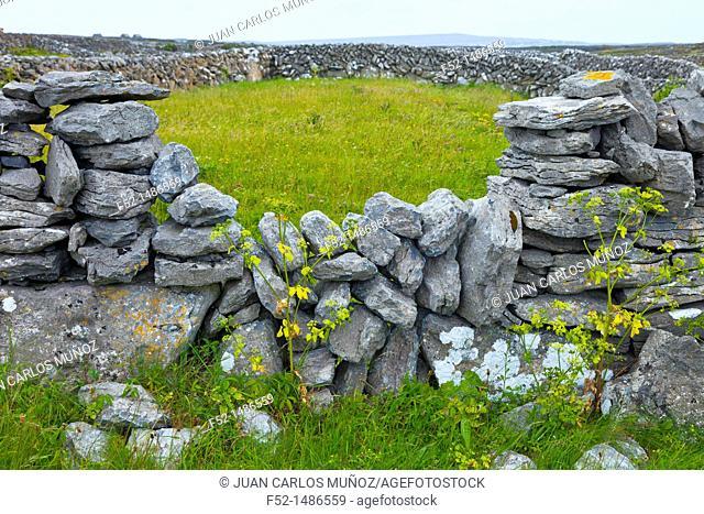 Inishmaan Island - Inis Oirr  Aran Islands, Galway County, West Ireland, Europe