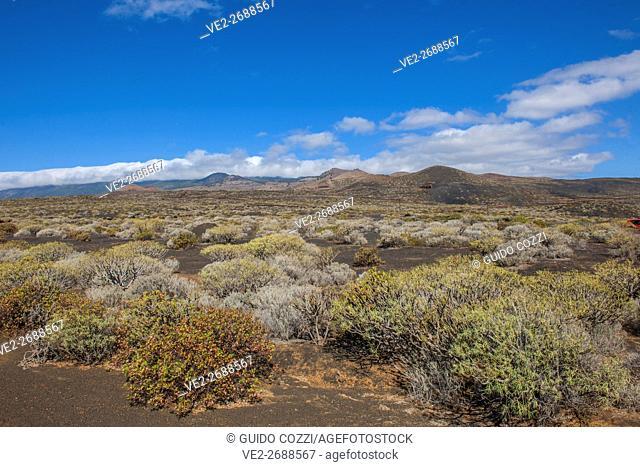 Spain, Canary Islands, El Hierro. Volcanic landscape near La Restinga