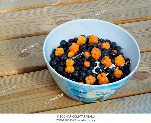 Müslischälchen mit Heidelbeeren und Moltebeeren. Muesli with blueberries and cloudberries