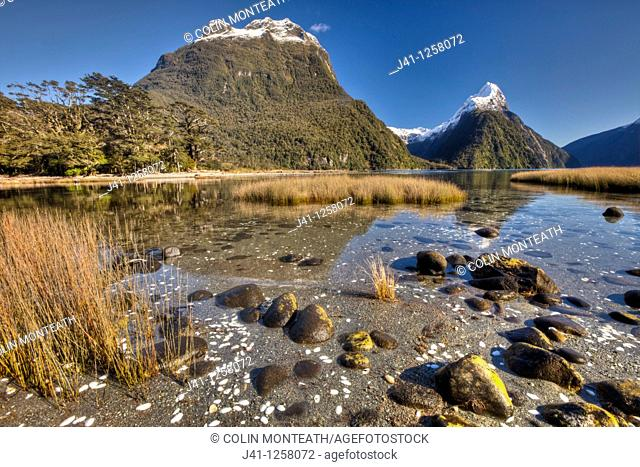 Mitre peak, winter snow on summits, salt tolerant sedges and grass in tidal zone, Milford Sound, Fiordland National Park