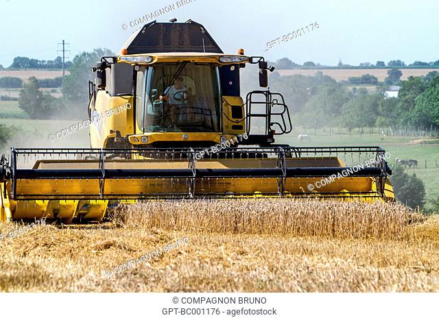 COMBINE HARVESTER IN A WHEAT FIELD DURING THE HARVEST, ESSAY, ORNE (61), FRANCE