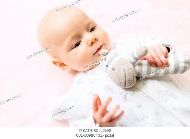Baby girl lying on back holding soft toy